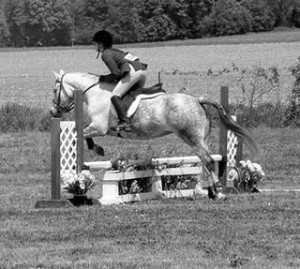 equitation, what the judge is looking for, horse training, horse riding, thistle ridge skill builders, thistle ridge stables, laura kelland-may, what the judge is looking for, hunter jumper, hunter judge