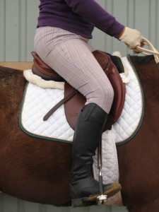 HOrse training, dressage training, straight horse, laura kelland-may, horse trainer ottawa, horse trainer canada