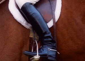 horse riding, horse dead to the leg, thistle ridge stables, laura kelland-may