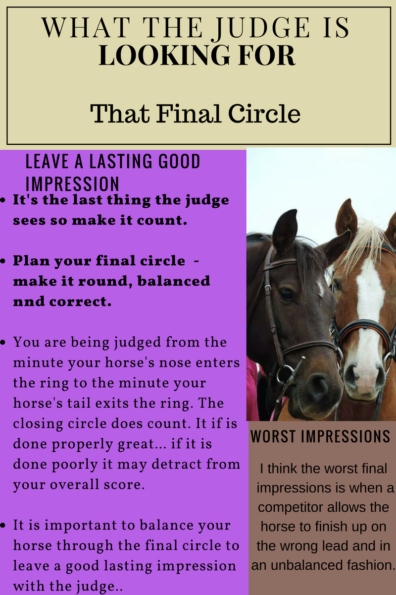 what the judge is looking for, Laura Kelland-May, Horse Expert